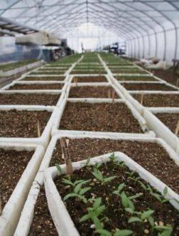 Zagrevanje zemlje u plastenicima