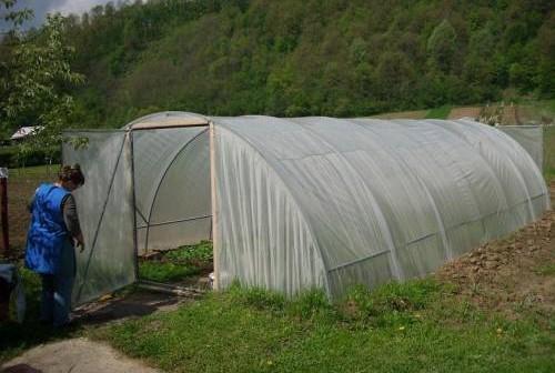 topli tuneli plastenici