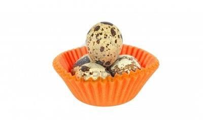 upotreba jaja japanske prepelice