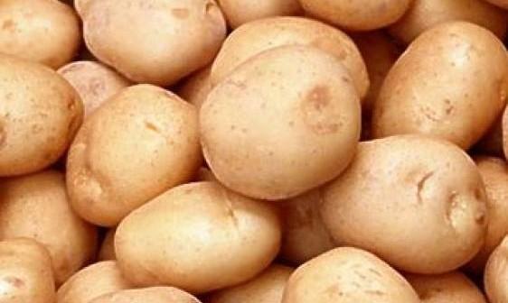 mladi krompir 1