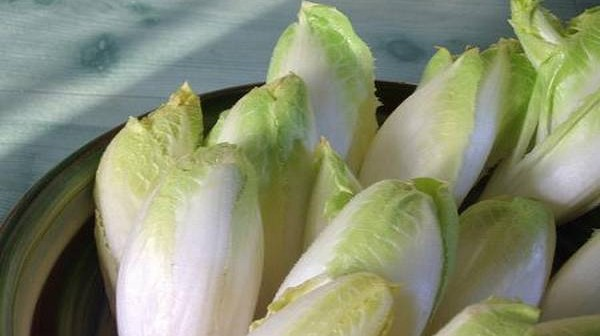 salata-radic-65