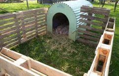 Izgradnja svinjca – kako napraviti svinjac za svinje?