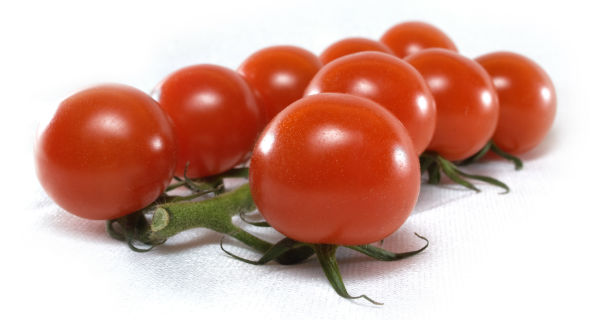 paradajz-maraton