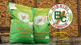 BC hibridi, uvek visokog i kvalitetnog prinosa